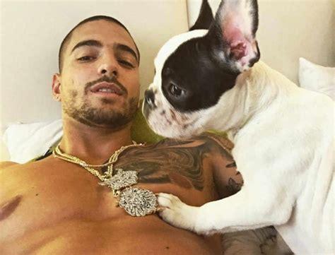 fotos de maluma en boxer y sin camisa meet priti maluma s adorable new puppy from his fans in