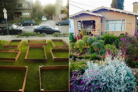 Transformation Garden by Homeowner S Lawn To Garden Transformation Yields More Than