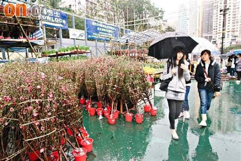 weather in china during new year hong kong travel hong kong new year weather