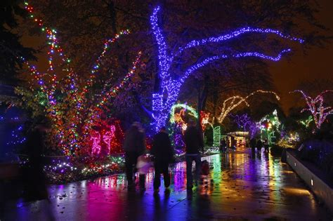 The Best Christmas Lights Are Cheaper Brighter Cleaner Best Lights Seattle