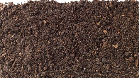 Planter Soil by Potting Soil Rocky Mountain Compost