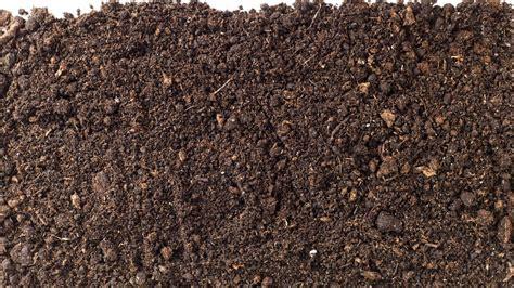 backyard soil backyard soil 28 images garden soils for an alpine rockery garden bulk organic