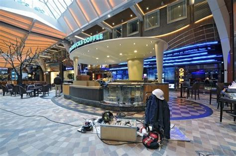 Starbucks To Open On Royal Caribbean Cruise Ship   LUXUO