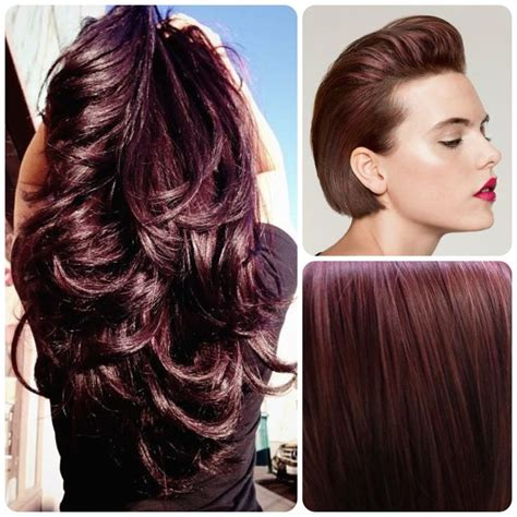 pinterest rich violets reds browns long hair 134 best hair color formulas images on pinterest red