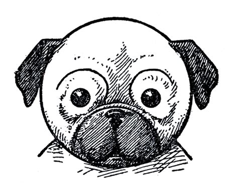 pug pictures to draw printable draw some dogs pug dachshund the graphics