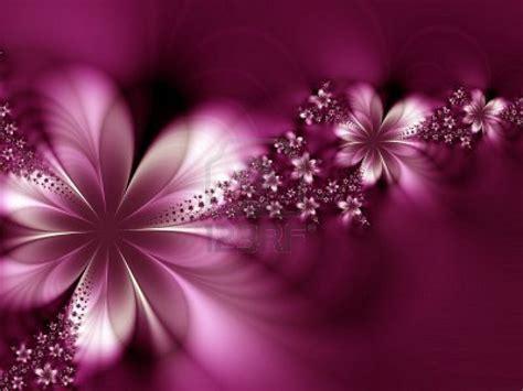 imagenes de rosas maravillosas flores maravillosas flores abstractas