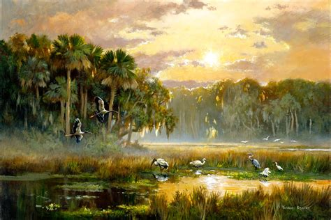 the florida land report the saunders collection natural