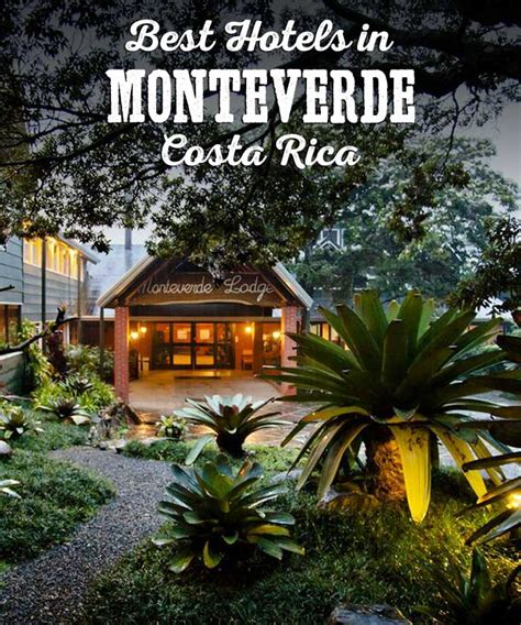Cool Treehouses Best Monteverde Hotels Costa Rica James Kaiser