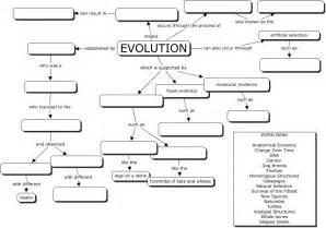 evolution concept map great evoltuion worksheet bio