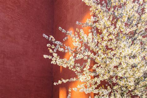 Feng Shui Regole by Cos 232 Il Feng Shui Regole E Colori Per Arredare Casa