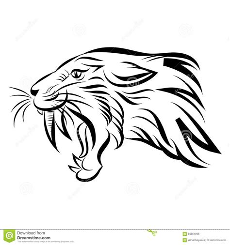 head of saber tooth tiger vector stock vector image