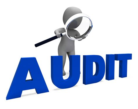 perm processing time 2015 audit d 233 finition what is