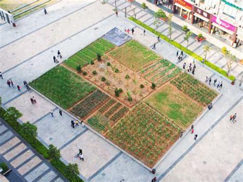 an urban farm sprouts in the heart of shenzhen inhabitat