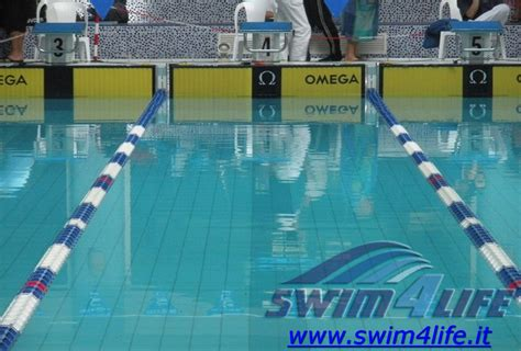 nuoto in vasca master calendario gare nuoto master cania swim4life magazine