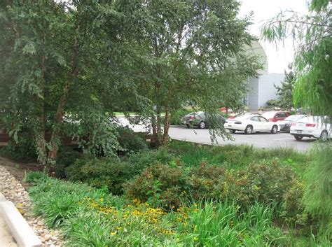 Botanical Garden Parking by St Louis Businesses Use Biodiversity To Improve Their