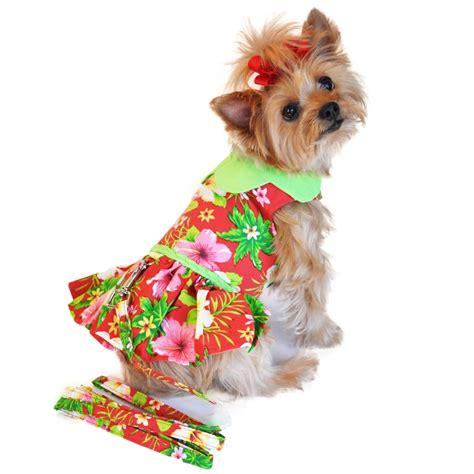 puppy dresses dresses kooldawgtees