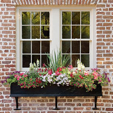 window boxs cottage flavor window boxes abloom