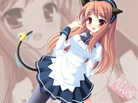 woman with cat tail anime girl with cat ears and tail wallpaper www imgkid