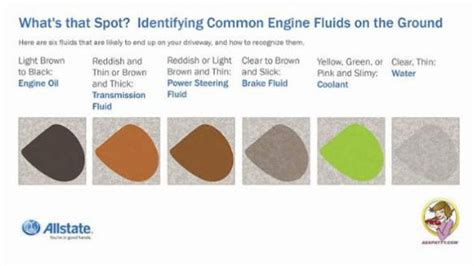 6 common fluids that can leak from your car and how to
