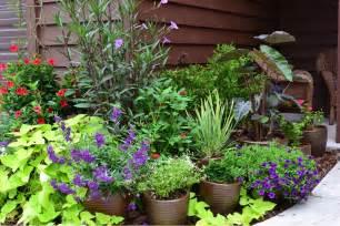container gardening container gardening part 1 garden