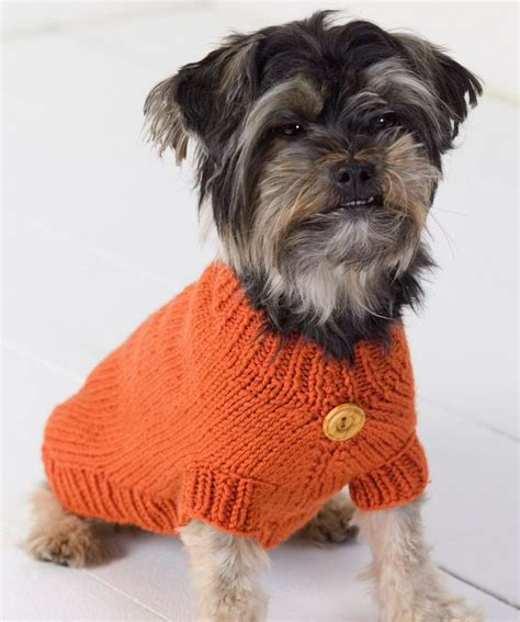 basic knitting pattern for dog coat dog sweater free knit pattern yorkie clothes pinterest