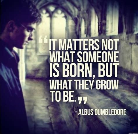 Harry Potter Quotes Best Harry Potter Quotes Quotesgram