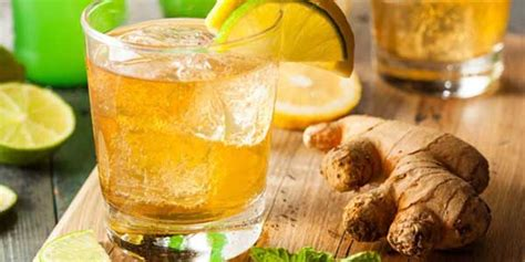 Teh Buah Lemon Kering 50g resep es lemon jahe mint segar resepkoki co