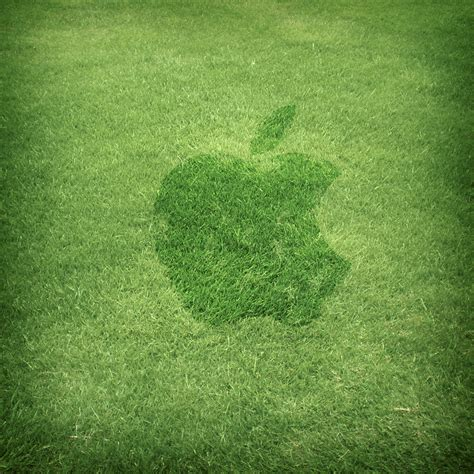 apple wallpaper grass ipad apple grass wallpaper