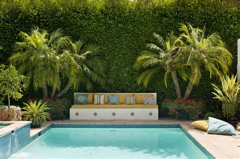 plants around pools prepossessing poolside gardens what are some poolside plants 2017 plants