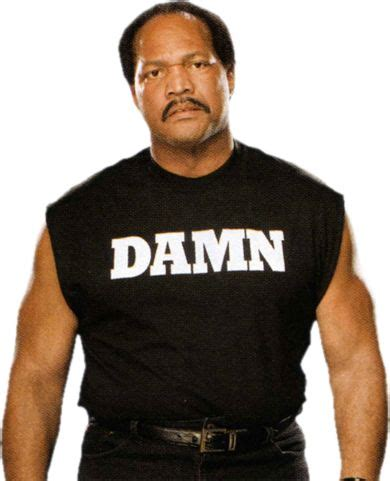 Ron Simmons Damn Meme - 17 best images about wwe superstars on pinterest triple