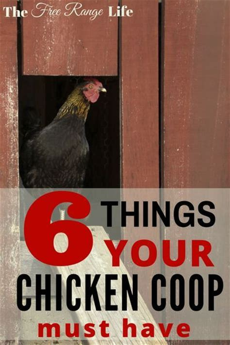Backyard Chickens Safety 1000 Ideas About Duck Coop On Duck House