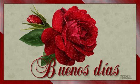 Imagenes Rosas Buenos Dias | imagenes de buenos dias con rosas imagui