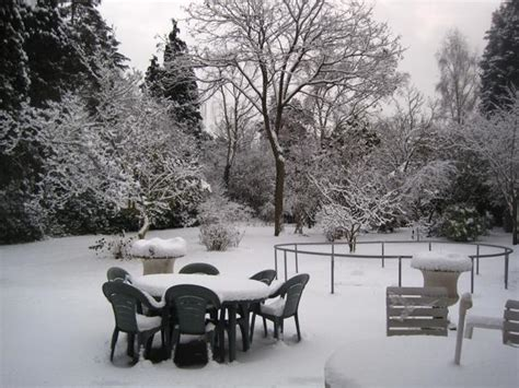 backyard winter gardening 21 beautiful winter gardens with snow capped plants and