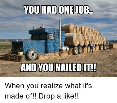 You Nailed It Meme