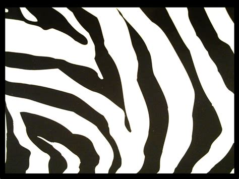 zebra template printable zebra pattern by didag12 on deviantart