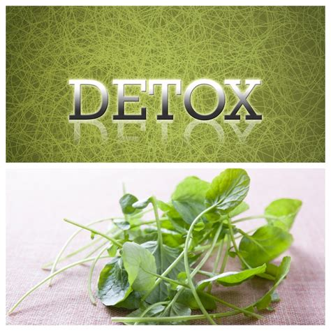 Of Maryland Detox by What Is A Cleanse Or Detox Kshamica Md