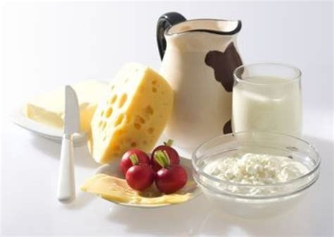 alimentos para tener leche alternativas alimenticias para obtener calcio
