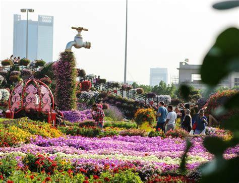 dubai flower garden dubai miracle garden