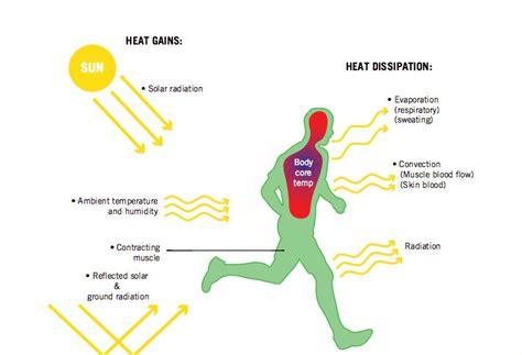losing diagram heat diagram wiring diagram schemes