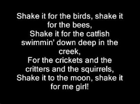 country girl shake it for me luke bryan lyrics youtube country