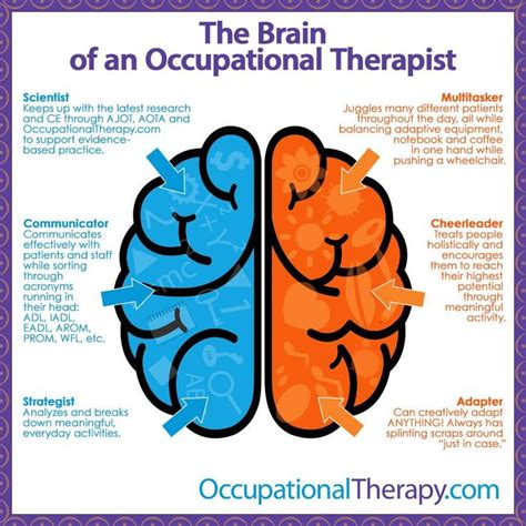 creativity the human brain in the age of innovation books 25 best ideas about occupational therapist on