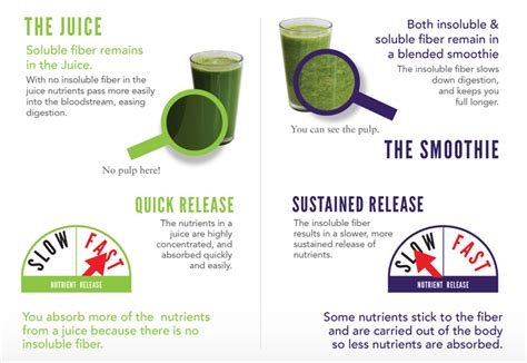 Juicer Dan Blender Quantum juicer vs blender which is better for nutrition