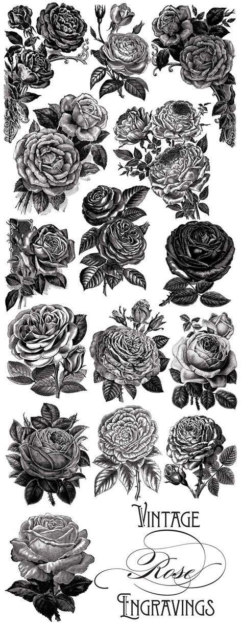 vintage rose tattoo designs best 25 vintage tattoos ideas on 3d
