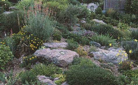 building a rock garden rock garden primer xeriscape hardscape