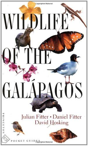 galã pagos mostly underwater books travel guide books vacation in the galapagos islands with children infobarrel