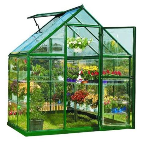 Small Greenhouses Home Depot Palram Harmony 6 Ft X 4 Ft Polycarbonate Greenhouse In
