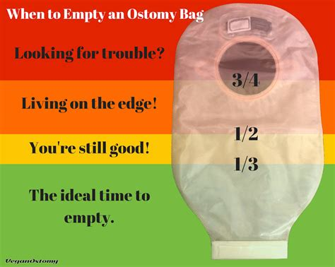 how often does an ostomy bag need to be emptied w