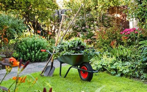 gardening picture the best benefit of gardening improving our mental health