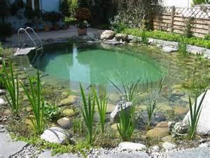 badeteich im garten badeteich schwimmteich klein