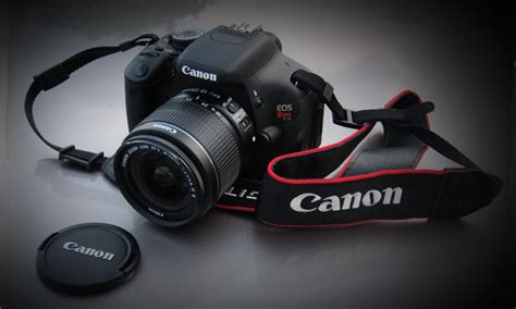 best dslr guide best five and recommended dslr